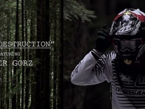 Tyler Gorz – Winter Destruction