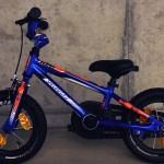 SPECIALIZED HOTROCK 12 COASTER BOYS – Custom
