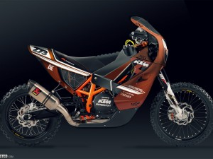 DERESTRICTED KTM Rally Bikenstein