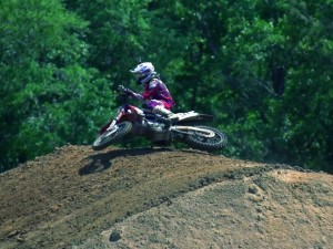 Views of Barcia
