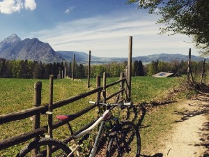 Not much to say really. #mountainbike #salzburg