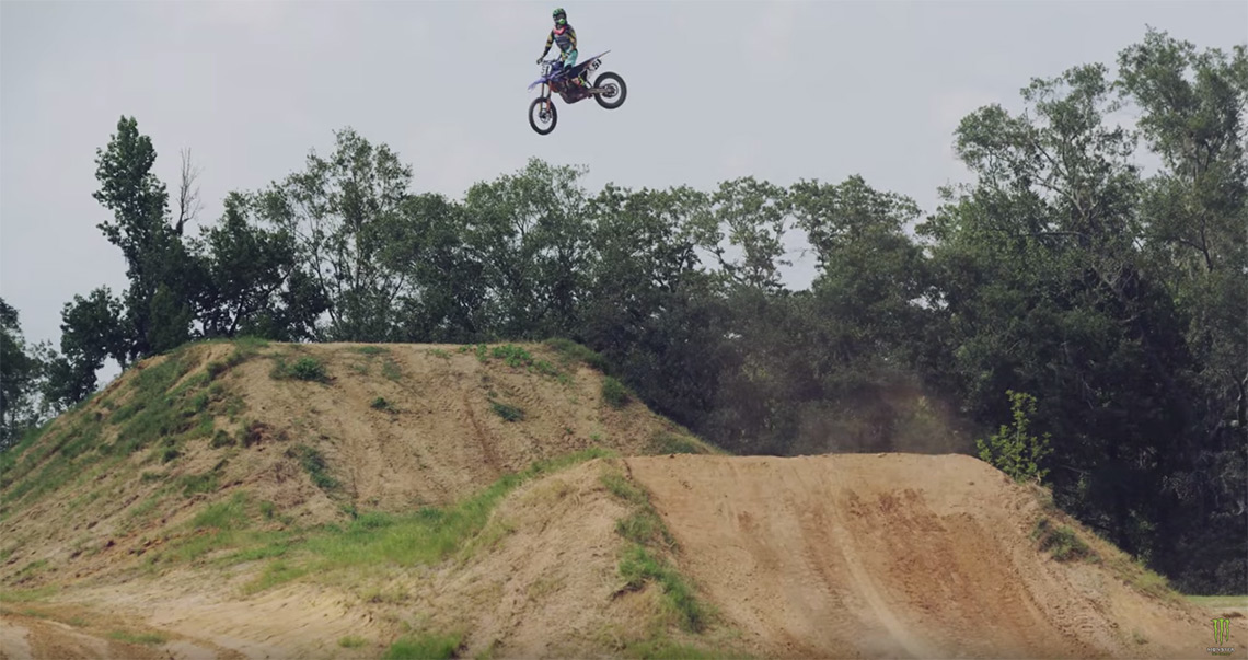 barcia-whip
