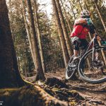 Enduro MTB: Specialized Stumpjumper FSR Expert 650B Long Term-Review