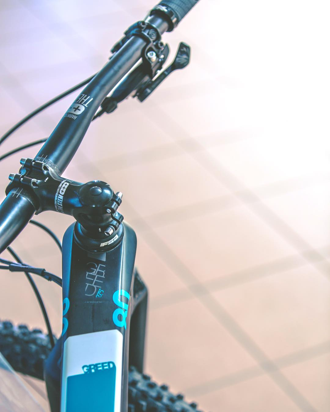 Detail shot of the Carbon Greed #hardseven . #XC #MTB #haibike 📷 @hdc_m