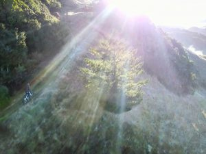 Peddling up a steep ridge this morning out of the shade as the suns rays peeked  over the hills from the east. Shot from my bro @lsp18 #emtb #bike #enduro