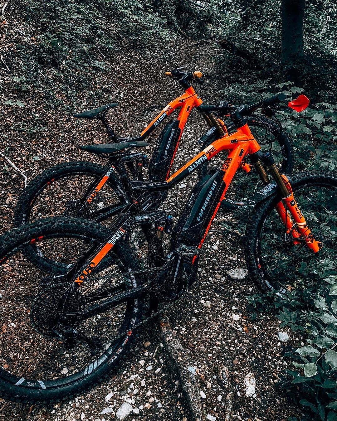Extroverts! #emtb #design #haibike #allmtn #ride100percent